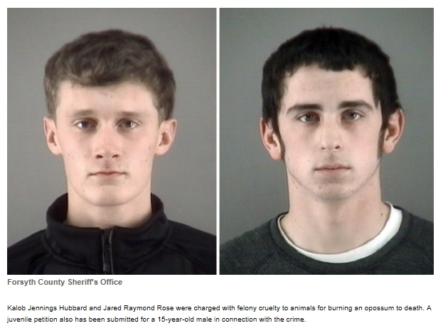 Kalob Jennings Hubbard, 18, of Stonewall Lane, Tobaccoville, and Jared Raymond Rose, 17, of Glenwood Lane, King