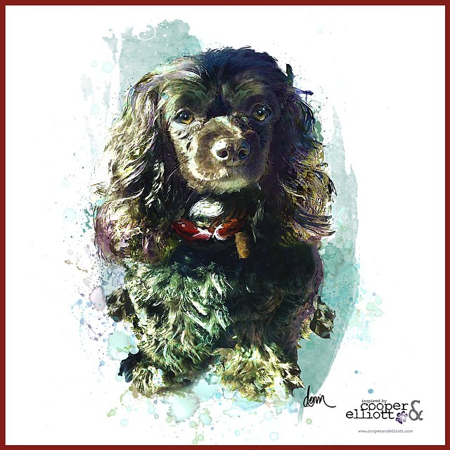 "Cookie was a sweet Cavalier King Charles Spaniel mix that lived with his loving family in Ft. Worth, Texas. In early May 2015, Cookie's life tragically and senselessly ended at the hands of another. A wonderful online community called ""the Cavalier Brigade"", reached out to Inspired by Cooper & Elliott to commission a custom pet portrait of this beautiful boy, in way of showing support to his family. We were honored to provide this piece and hope that the family finds comfort in it and that there will be justice for Cookie."