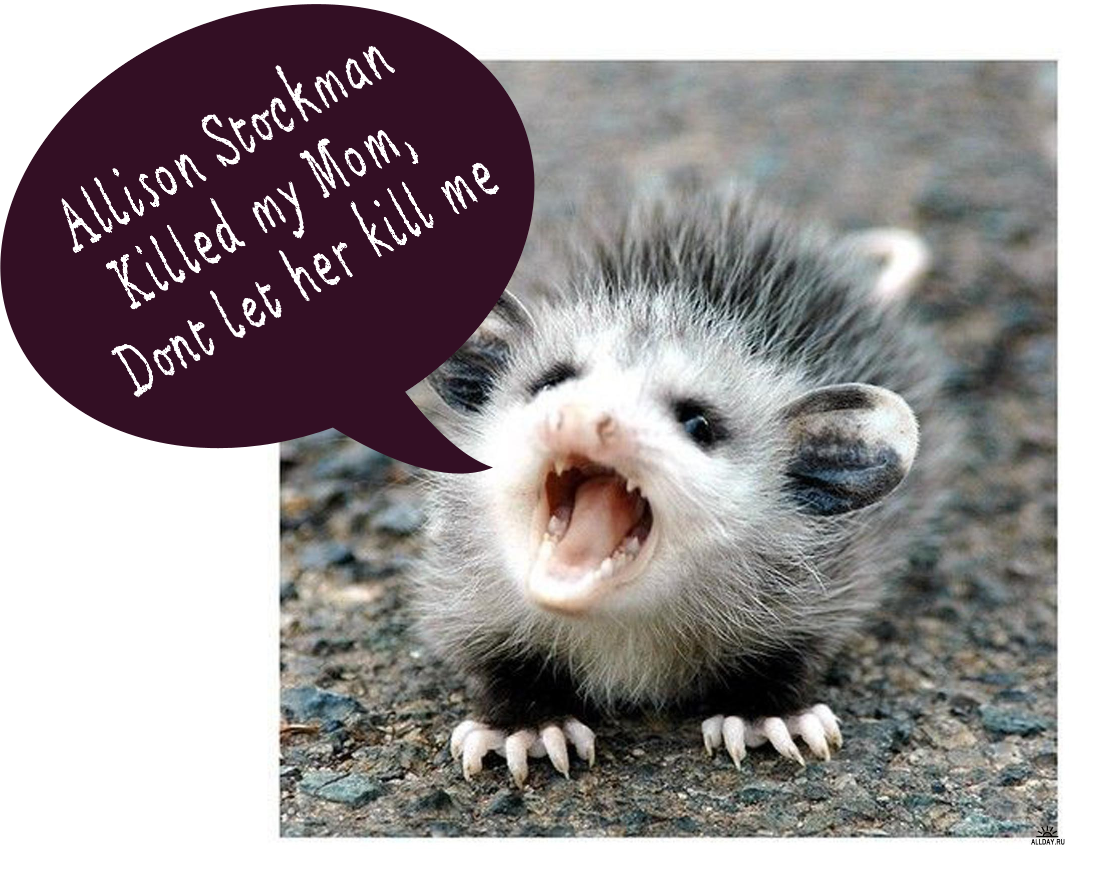 Monster Allison Stockman posts how to kill opossums